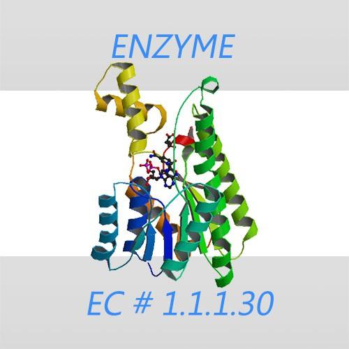 D-3-Hydroxybutyrate dehydrogenase