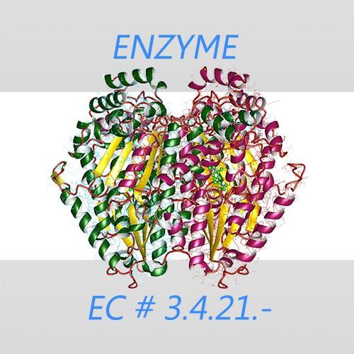Alkalophilic proteinase