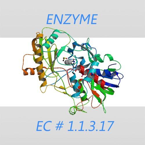 Choline oxidase
