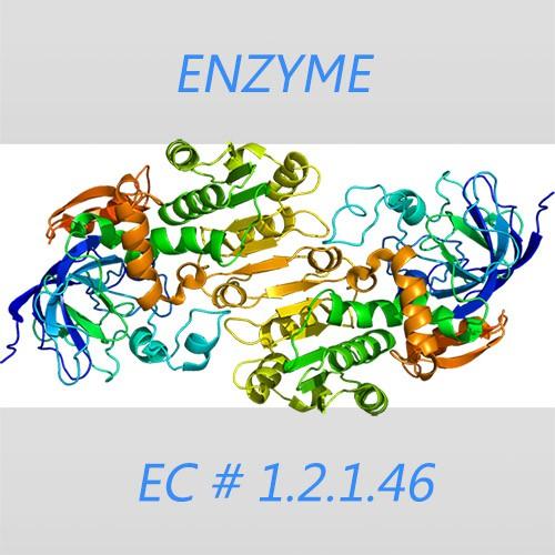 Formaldehyde dehydrogenase