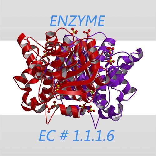 Glycerol dehydrogenase
